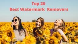 Top 20 Best Watermark Removers [ 2021 Selective]
