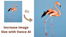 How to Increase Image Size with Vance AI?