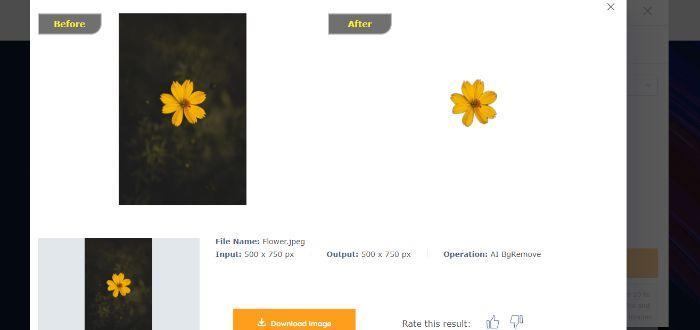 FlowerBackgroundRemove